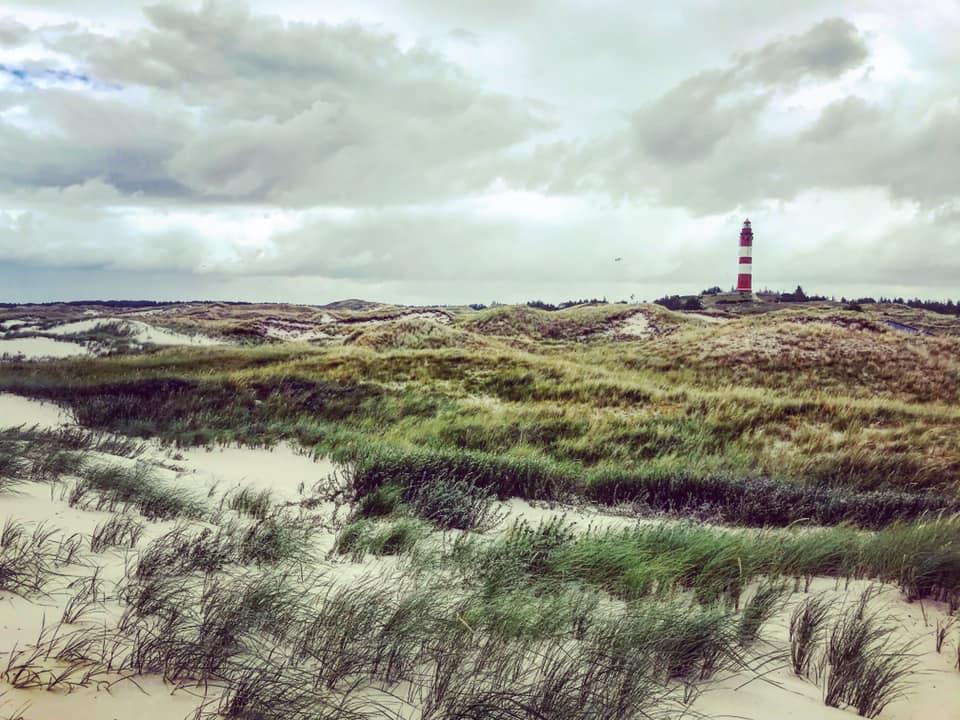 Amrum, die Insel vor dem Wind
