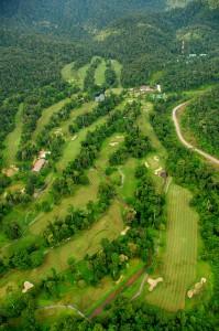 Malaysisches Grün – bestes Grün