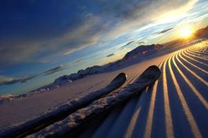 Der frühe Vogel fährt Ski