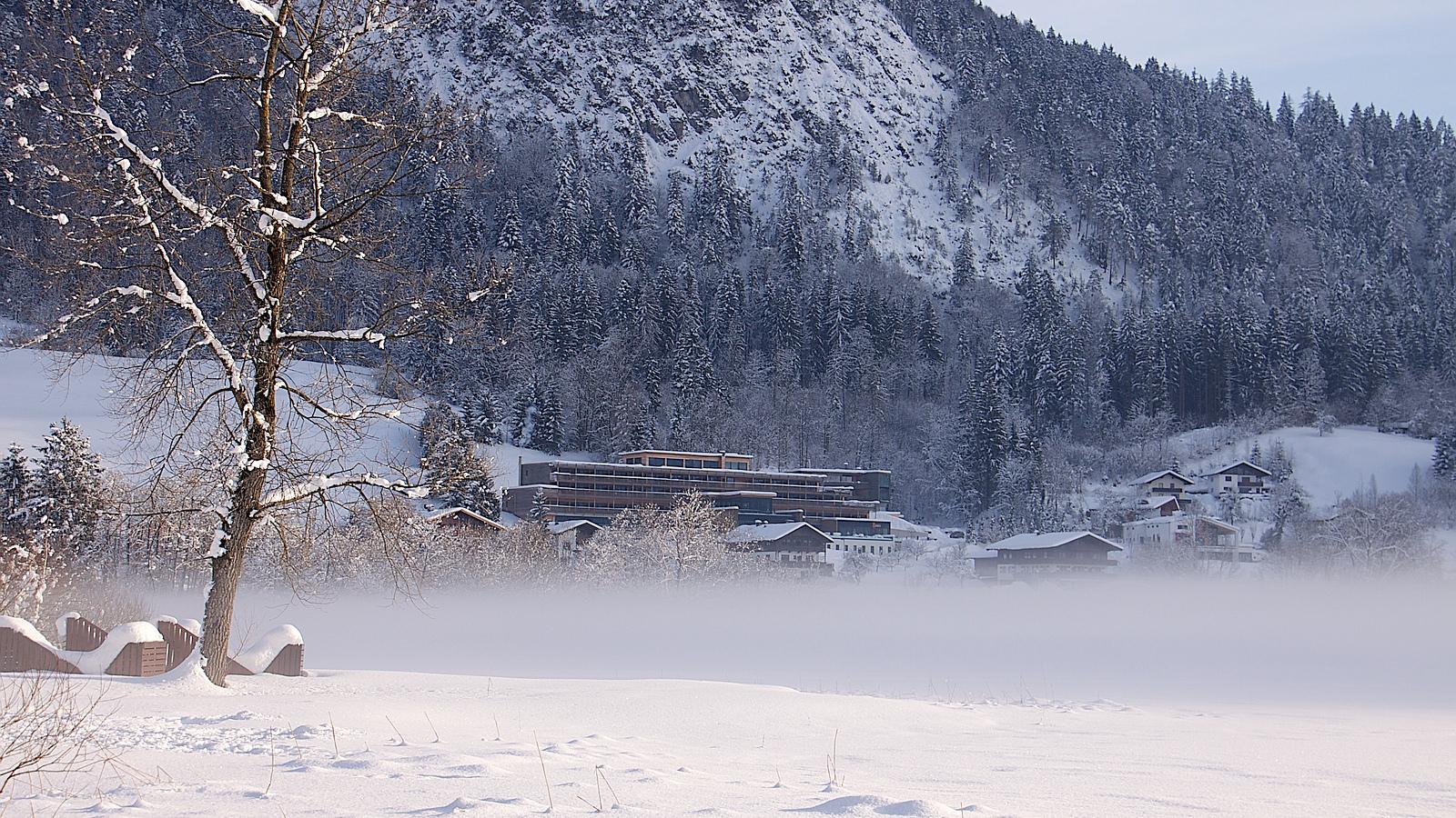 Armona-Winter