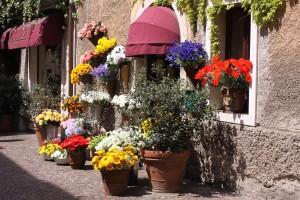 Blumenstand in Bardolino