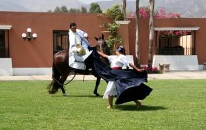 Dressurvorführung mit Tänzerin