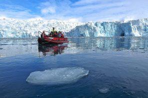 Den Frack tragen nur Pinguine – Expeditionsseereisen ins ewige Eis