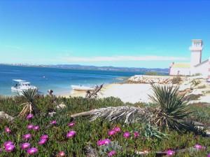 Wild-romantischer Strand auf der Ilha da Culatra, Foto: Heiner Sieger