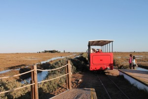 Mit der alten Lagunen-Bahn geht es gemächlich zum endlosen Sandstrand Barril, Foto: Heiner Sieger