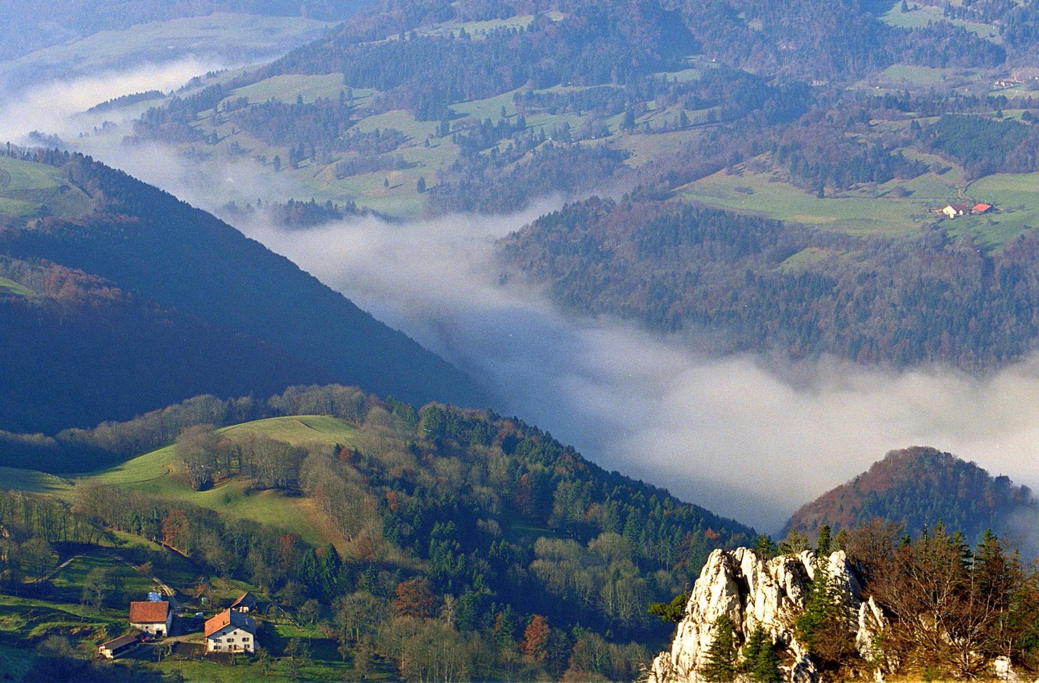 Franches_Montagne,_die_Freiberge,_Bild_Jura_Tourismus