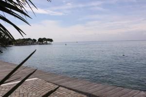 Wein und Olivenöl am Gardasee