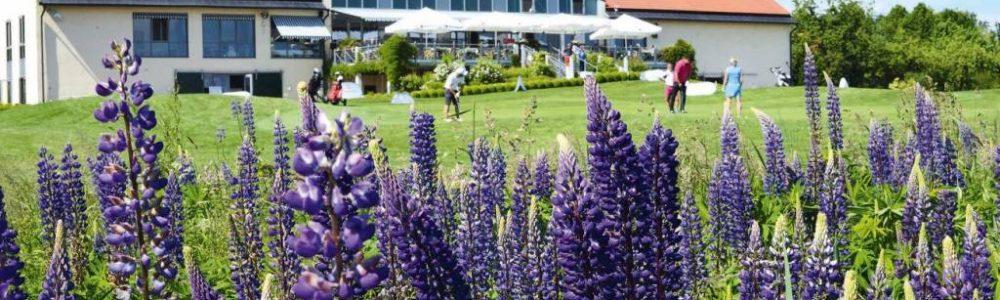 Gut-Haeusern-Golfrestaurant-Alte Gutscheune4