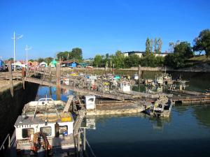 In Chateau d'Oléron befindet sich der größte Austernhafen der Insel