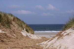 Mit Blick auf Strand und Meer lernt die Seele fliegen. Foto: Dominique Schroller