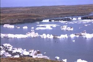 Island Eisschollen (1)