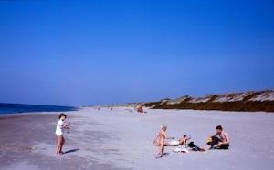 Kurische Nehrung Strand