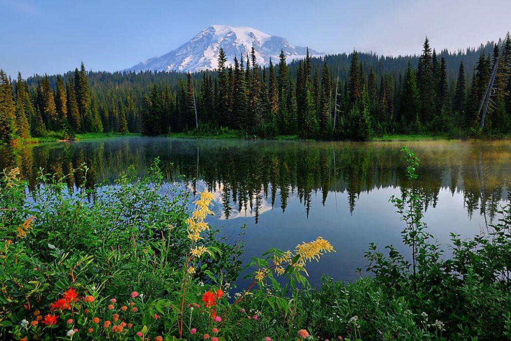 Vulkane Küsten Regenwälder Bundesstaat Washington USA
