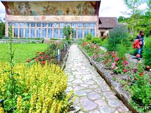 Orangerie Kloster Bronnbach Fresco 4 Erdteile 2016-06-16 Foto Elke Backert