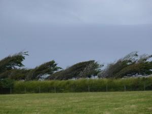 Der Wind bläst vom Atlantik