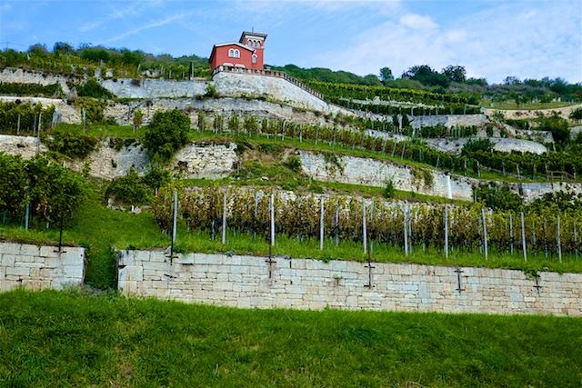 Saale-Unstrut – ein noch junges Reiseziel in Deutschland: Welterbe, Romanik und Wein