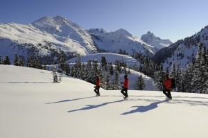 Mit Schneeschuhen kommt man in Tirol fast überall hin. © TirolWerbung/Josef Mallaun