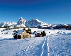 Im Winter verwandeln sich die großflächigen Almen der Seiser Alm in ein romantisches Skigebiet. Fofo: Clemes Zahn