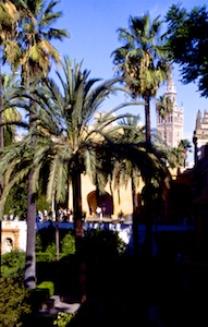 Sevilla Alcazar-Garten 2010-03-16 Foto Elke Backert