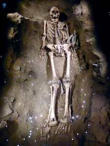 Skelett Mensch von Mondeval (1)