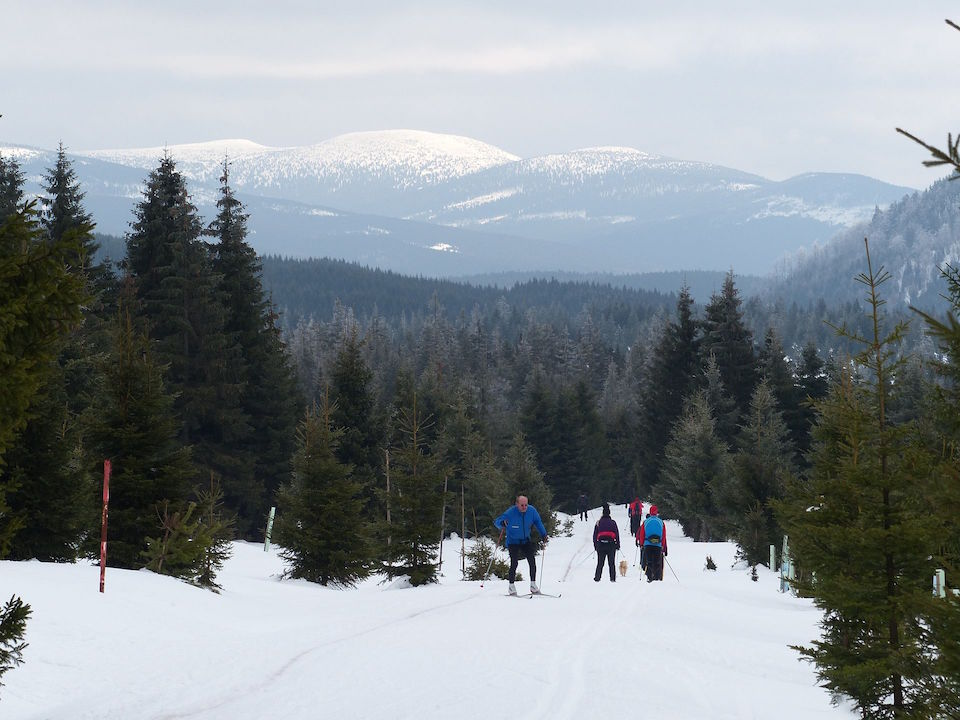 Skilanglauf - im Hintergrund das Riesengebirge