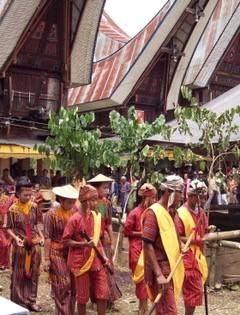 Tana Toraja feiert seine Toten
