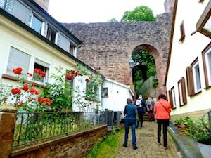 Weg Stadtmauer zum Juedischen Friedhof Miltenberg 2016-06-16 Foto Elke Backert (1)