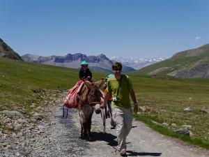 Wer es nicht zu Fuß schafft, erklimmt den Refuge-de-la-Blanche auf dem Eselrücken. Foto: Wolf-Götz