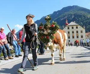 Der Almabtrieb in Ried und in Pfunds findet am 17. September statt © Tiroler Oberland/Kirschner