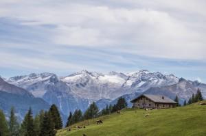 Die Biberalm liegt direkt am Salzburger Almenweg.  © Creatina