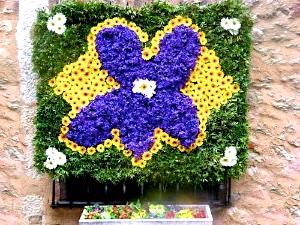 fete-violettes-79-1_w1000