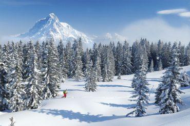 Das größte Schneeschuhfestival Österreichs