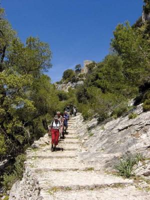k-2-Wandern auf Mallorca ( Foto Wikinger Reisen)