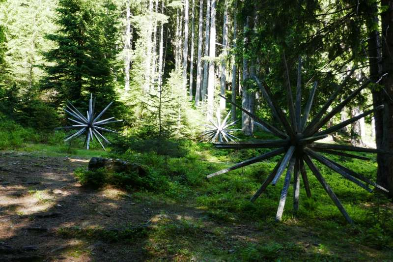 Kunstweg im Wald