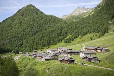 Südtirol: Goldener Herbst am Berg