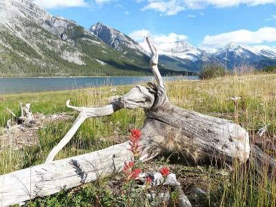k-einsamer Bergsee in Alberta