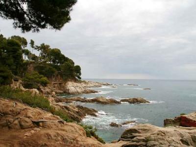 k-unvergleichlich - die wilde Küste (1)