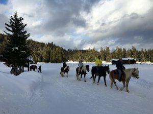 Winterurlaub ohne Skier? Die sieben besten Tipps für Tirol.